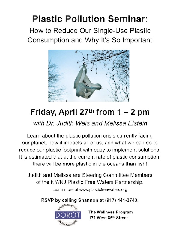Plastic Pollution Seminar melissa elstein1
